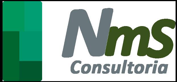 Nms consultoria